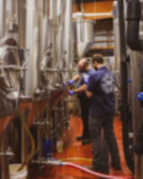 Metazoa_Brewing_Staff_brewing_area.jpg