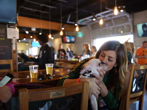 Pet-Friendly Taproom