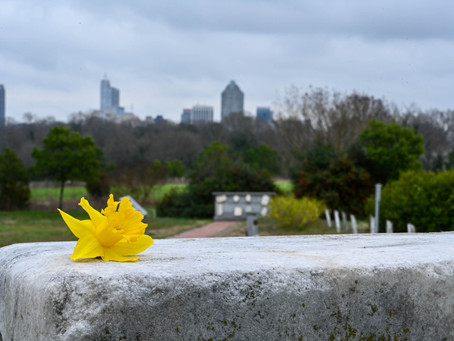 """Dorothea Dix Hospital Cemetery, """"because every life is worth loving and remembering - always."""""""