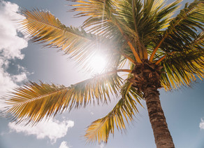 Tips from Tracy... for Holiday Sun Health