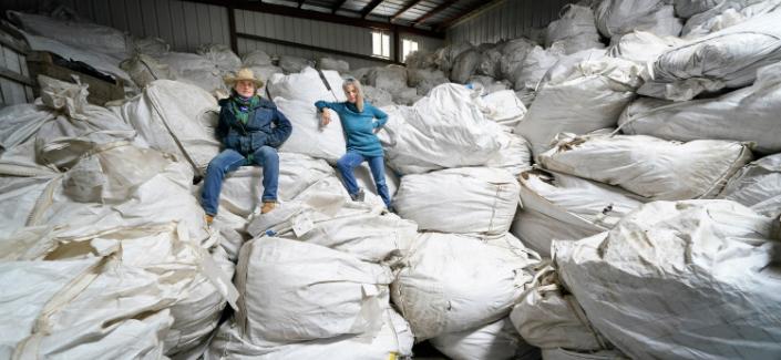 As state hemp market goes to pot, growers eye switch to marijuana