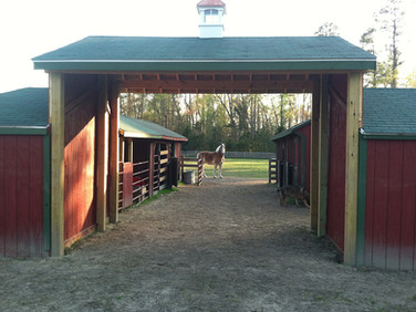 Barn and Livestock facilities .jpg