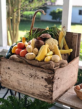 Peace Hill Market Garden Veggies