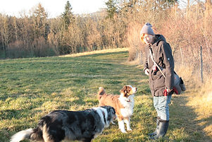 Hundeschule Wil und Umgebung