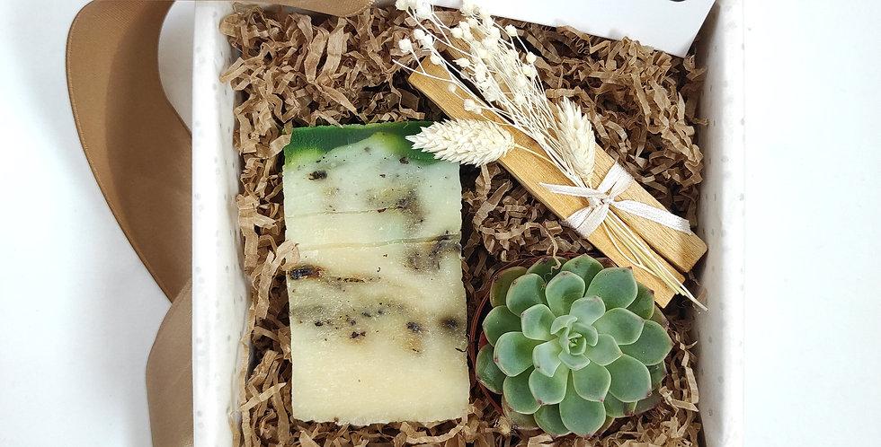 "Gift Box ""Green Tea"""
