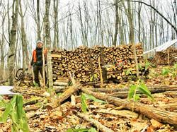 薪を作り始める。