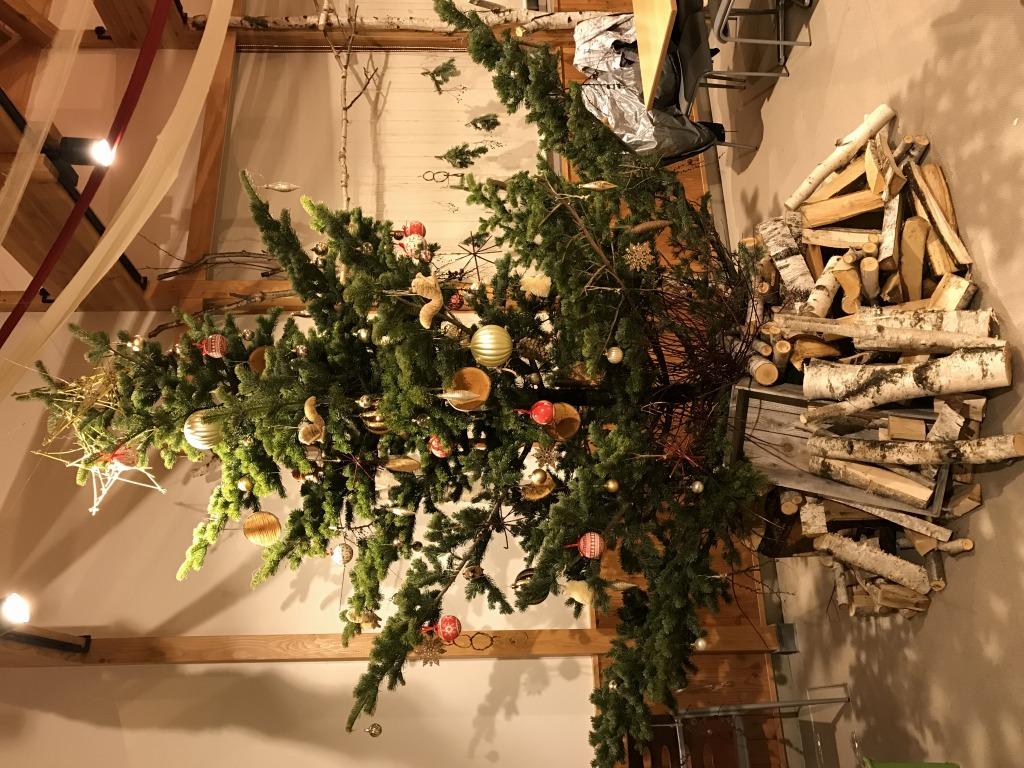 比布駅にクリスマスツリー