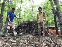 中学3年生と森づくり。