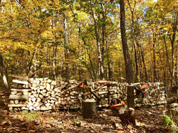 里山部の薪