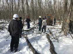 自伐型林業研修
