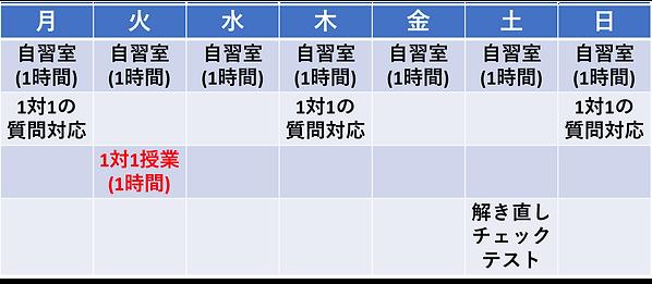 モデルスケジュール束進のみ.png