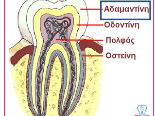 Αδαμαντίνη (σμάλτο) των δοντιών και ο ρόλος της