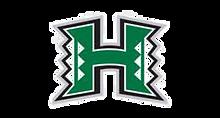 hawaii_edited.png