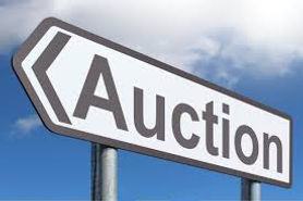 SDP-SF Event: On-line Auction
