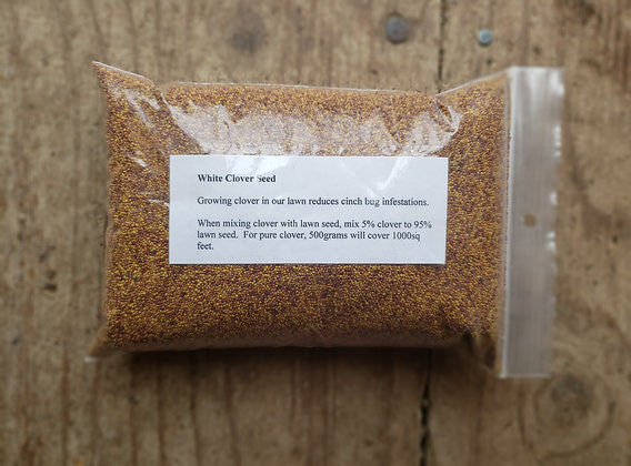 Clover seed 500g