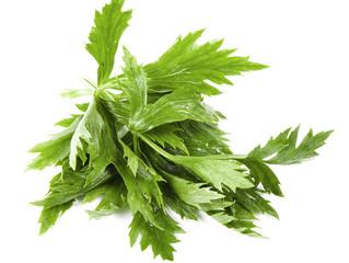 Sweet & Sour Celery Leaf Salad