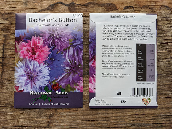 Bachelor's Buttons - Tall Double Mix