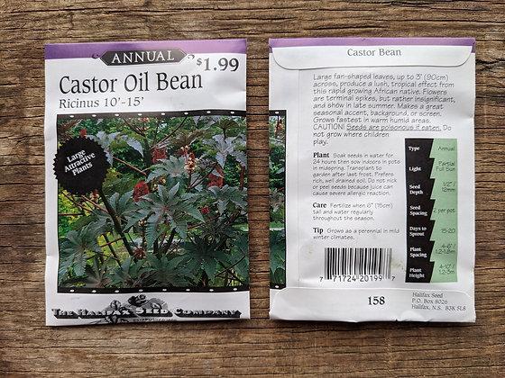 Castor Oil Bean