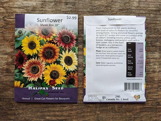Sunflower - Music Box