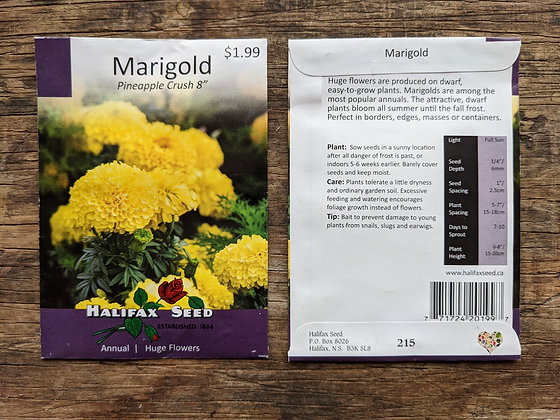 Marigold - Pineapple Crush