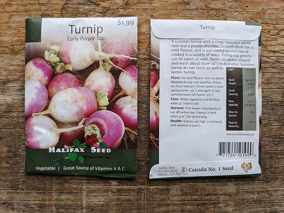 Turnip - Early Purple Top