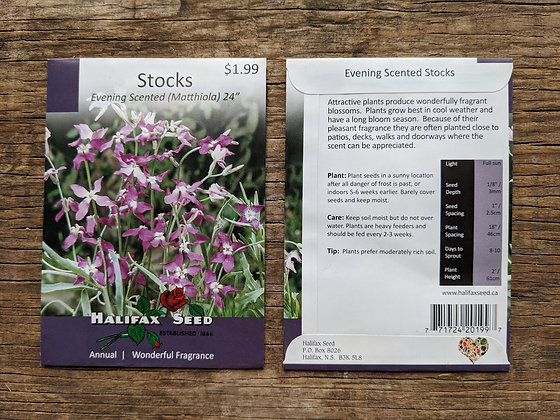 Stocks - Evening Scented