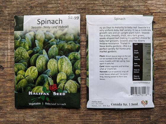 Spinach - Seaside (Baby Leaf Hybrid)