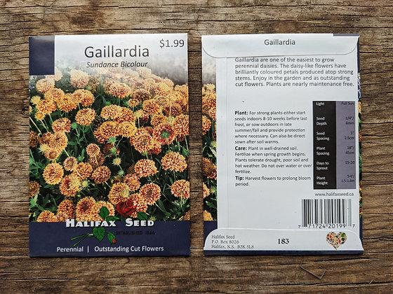 Gaillardia - Sundance Bicolour