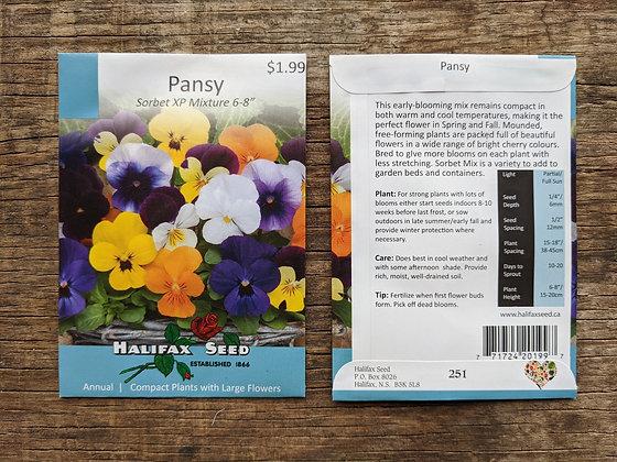 Pansy - SorbetXP Mix