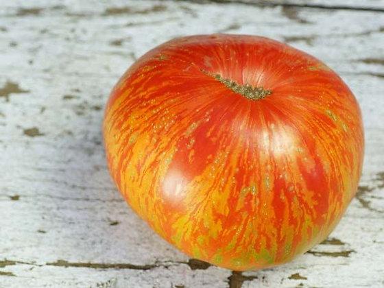 Tomato - Solar Flare