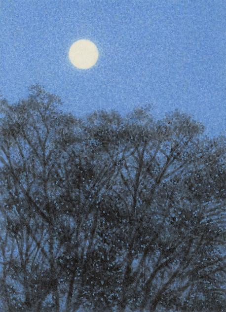 Keyakibaum und Mond