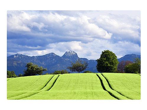 Felder über Bad Aibling zum Wendelstein 1