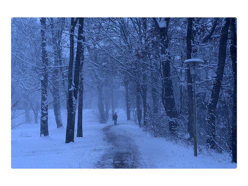 Bad Aibling Kurpark im Winter