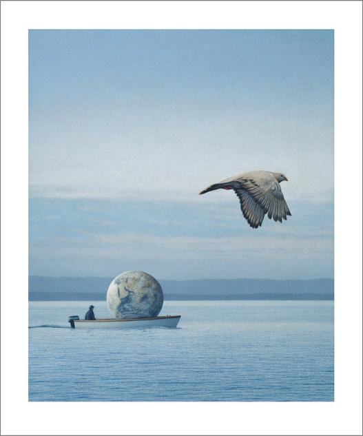 Erde und Taube
