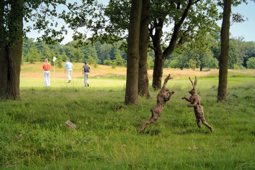 Golfers Hares.jpg