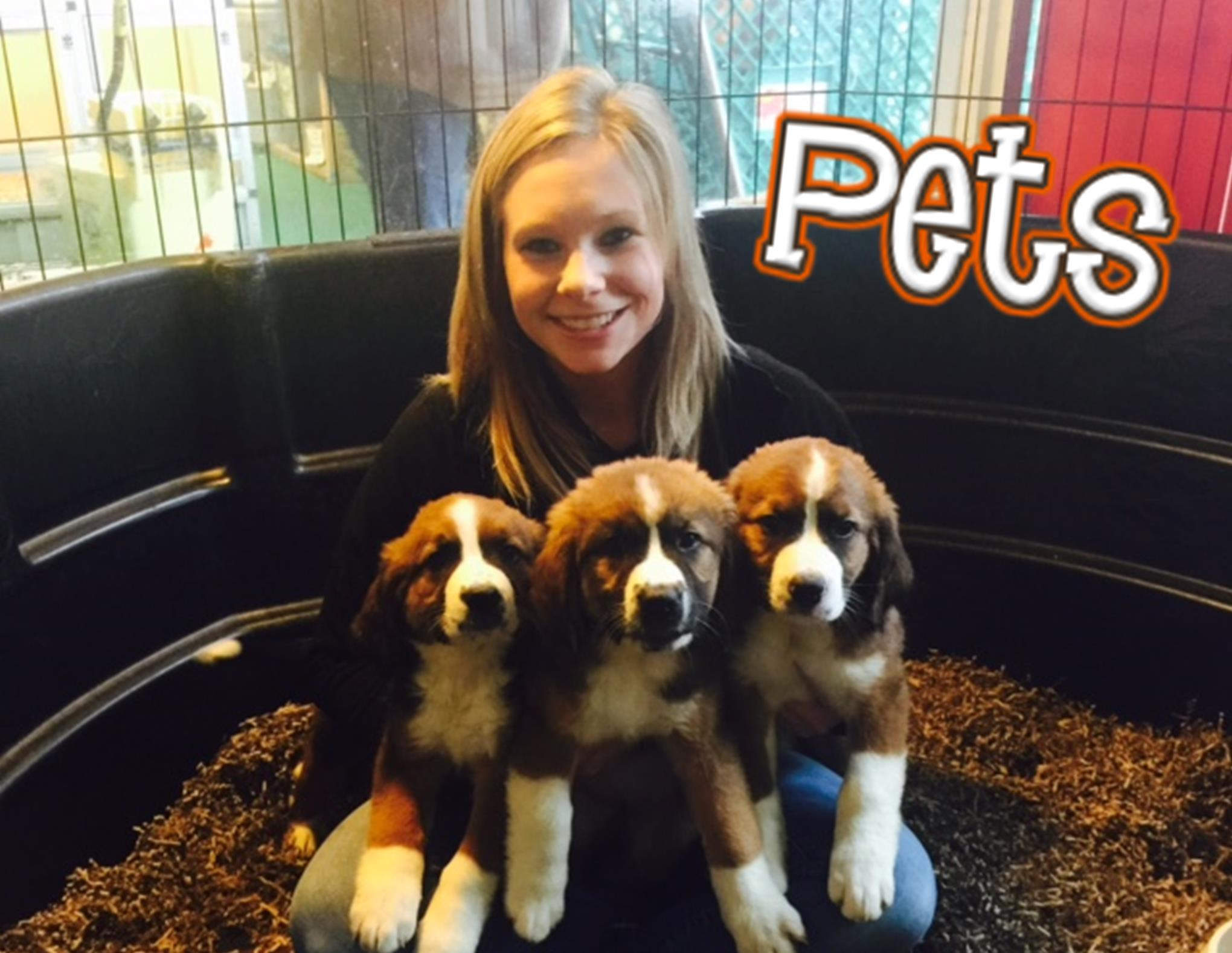 CJ promo pets
