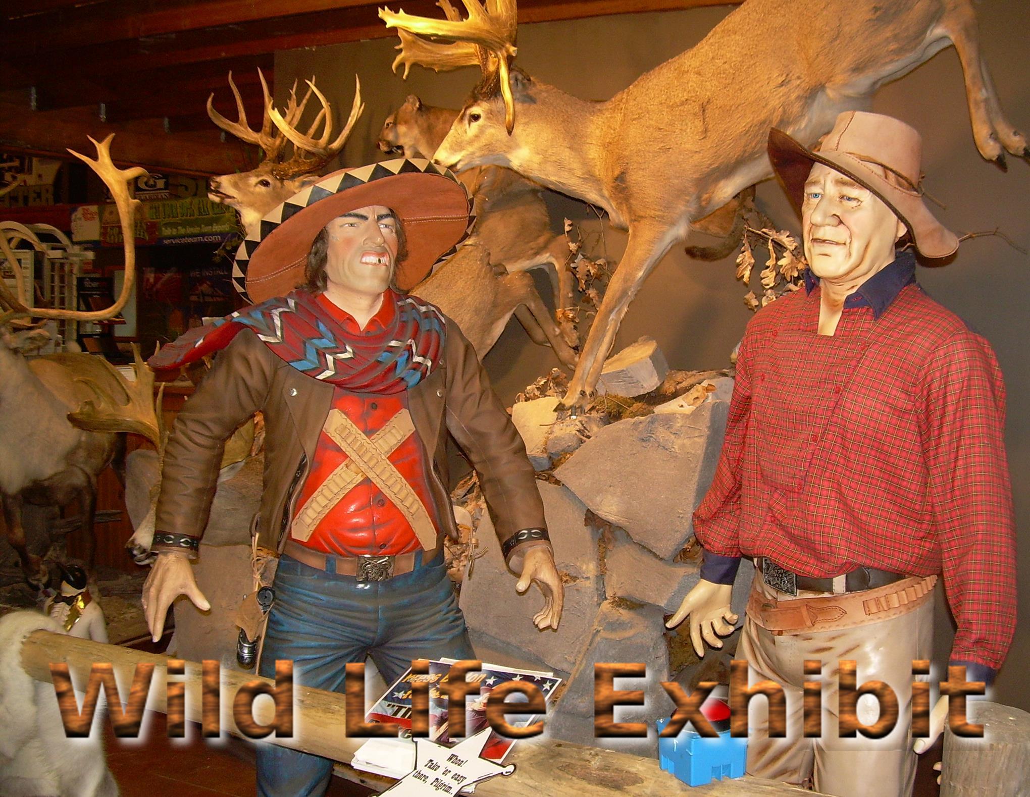 CJ promo wild life exhibit