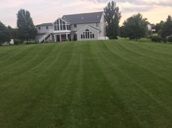 lawn 4