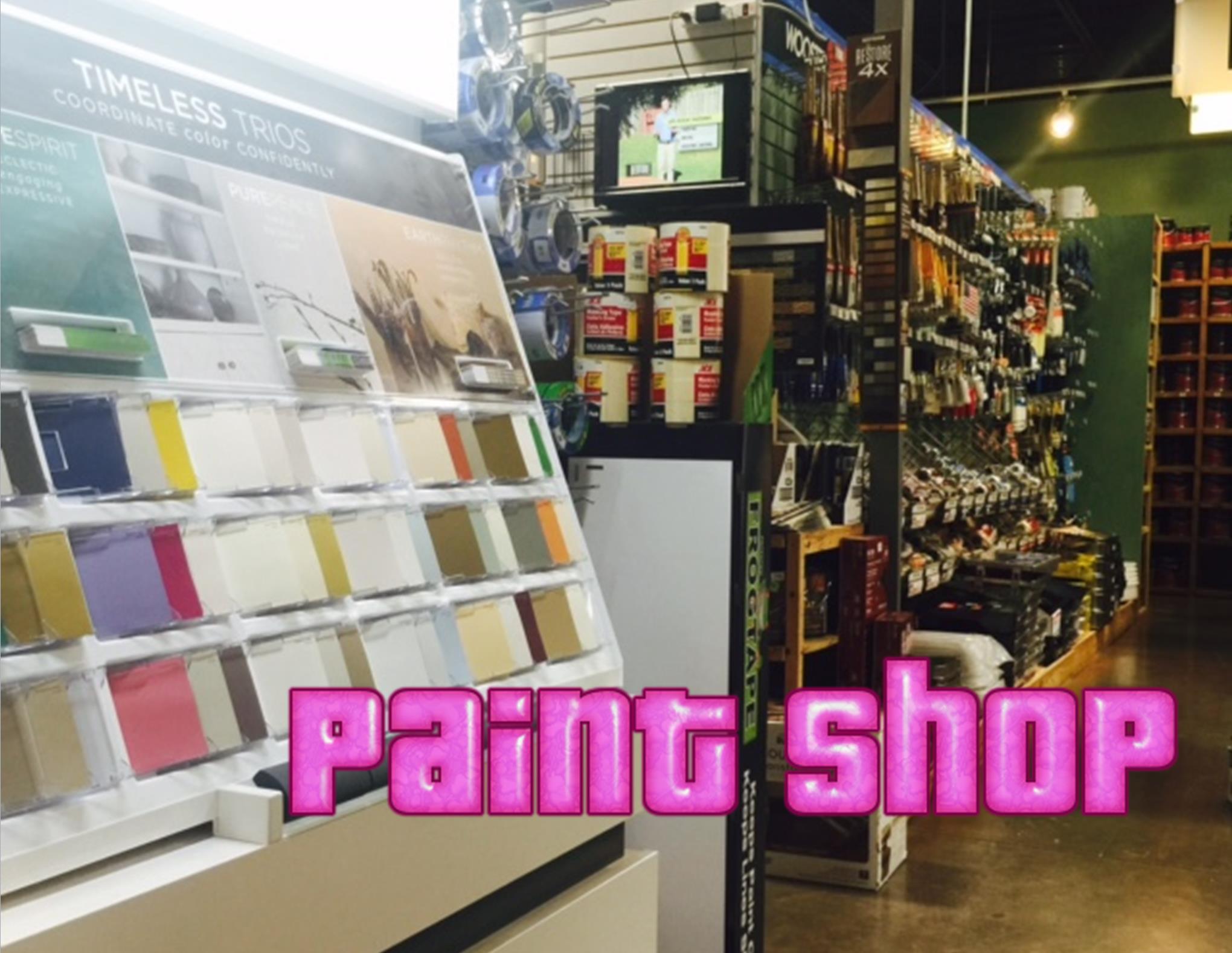 CJ promo paint shop