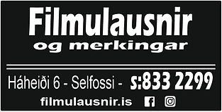 filmulausnir_logo_svartur bakgrunnur.PNG