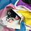 Thumbnail: Utah Trans Pride Packages