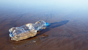 Plastic Waste: How is it affecting our world?