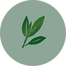 ALPHA-PINENE ICON.png
