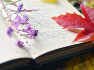 Зачем учить стихи наизусть?