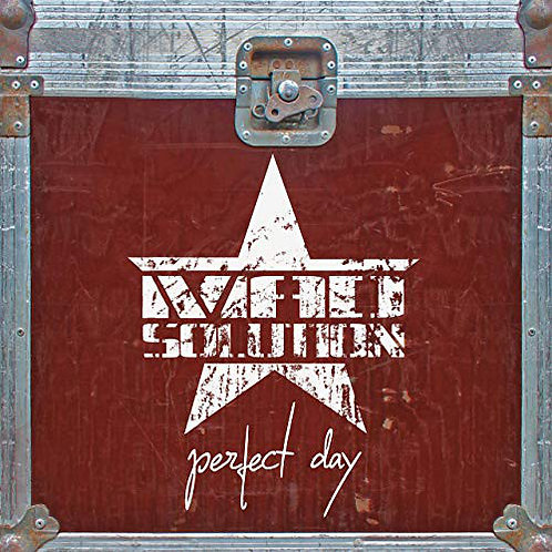 MAD SOLUTION - Perfect Day CD