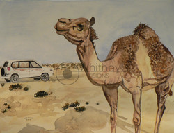 Land Cruiser, Watercolor