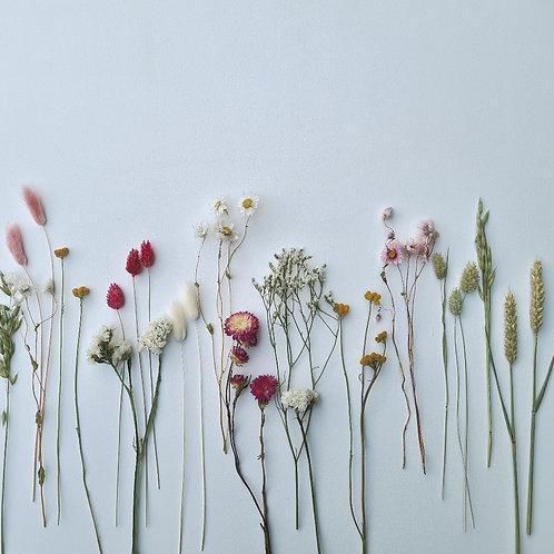 La box de fleurs