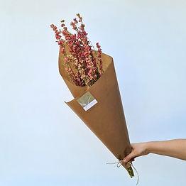 botte-de-fleurs-delphinium_edited.jpg