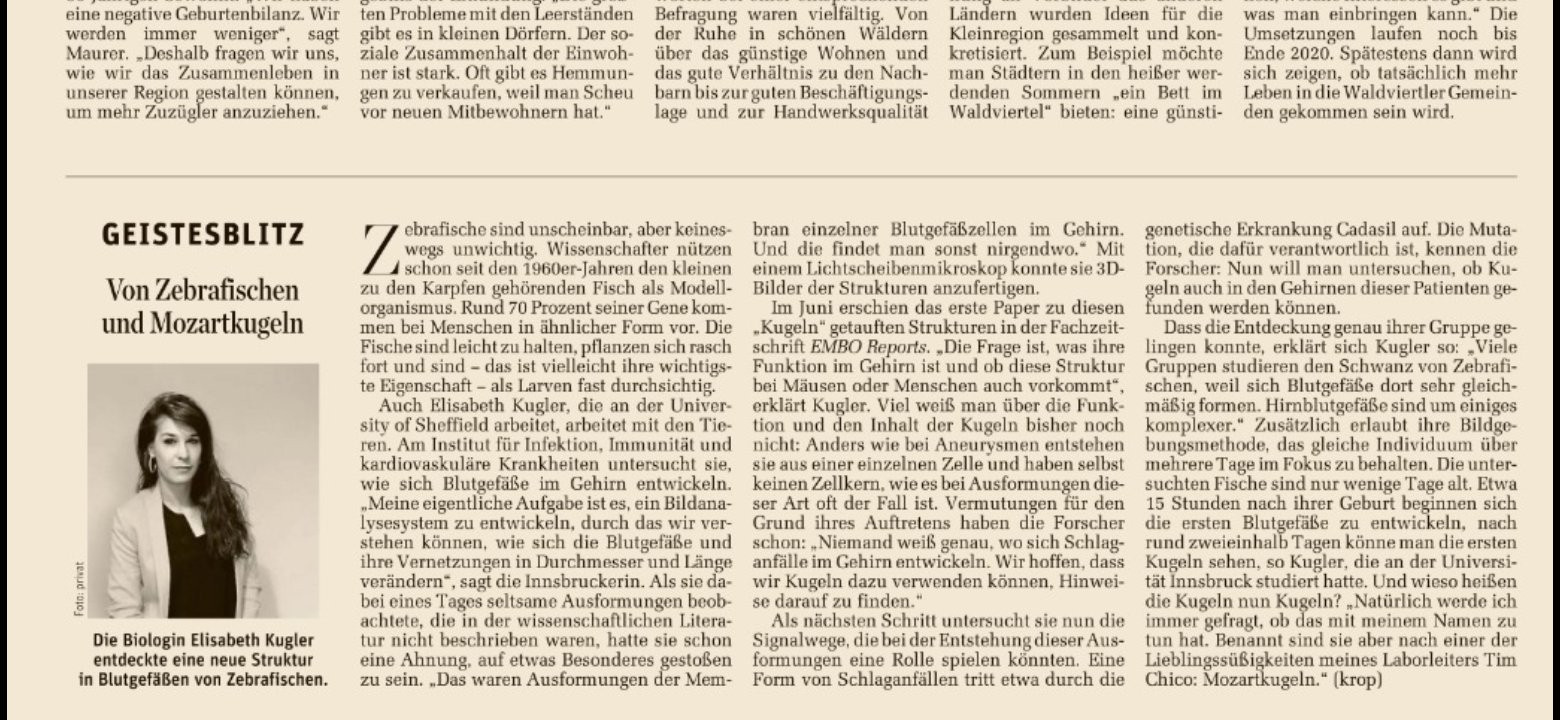 "Researcher Profile Article in the Austrian Newspaper ""Der Standard"""