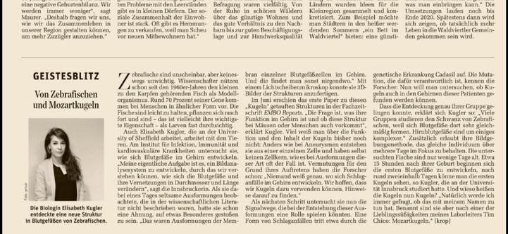 """Researcher Profile Article in the Austrian Newspaper """"Der Standard"""""""